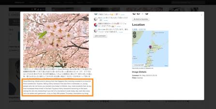 otzberg.net/migo (im Admin Modus) - Übersetzung durch Bing Translate Service
